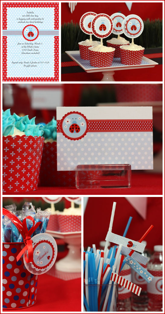 Ladybug Birthday Collection by The Celebration Shoppe