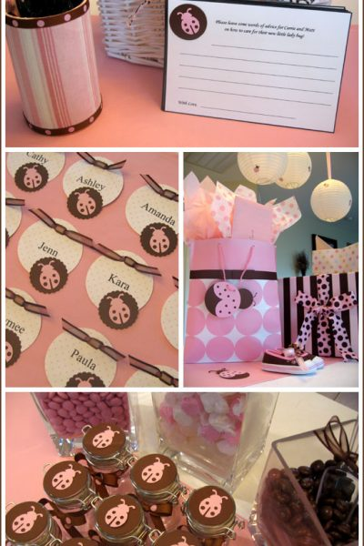 Real Party: Ladybug Baby Shower