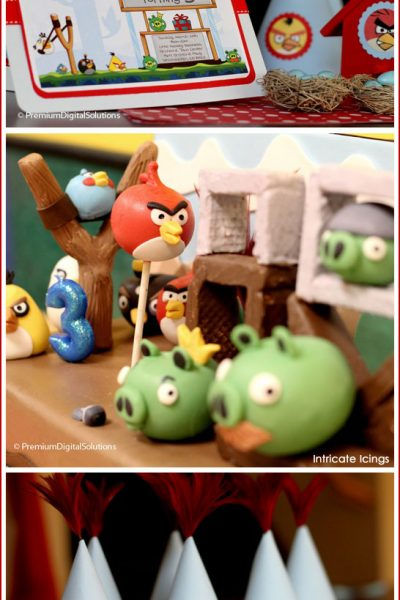 Real Party: Angry Birds Birthday