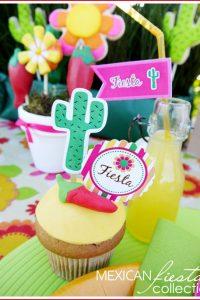 Mexican Fiesta for Cinco De Mayo