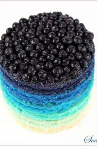 Blueberry Rainbow Cake