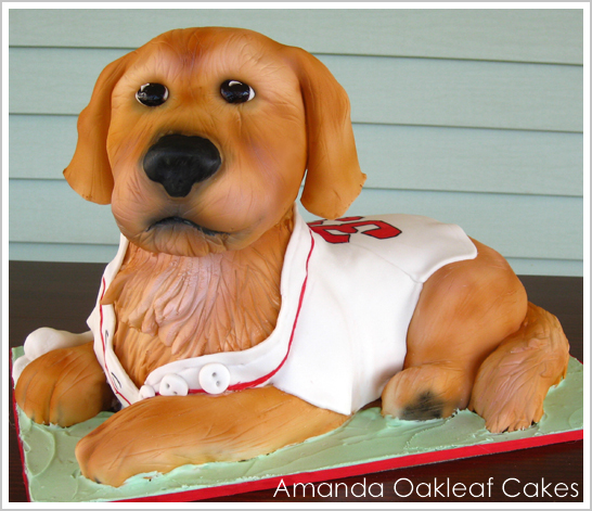 3D Dog Cake by Amanda Oakleaf Cakes