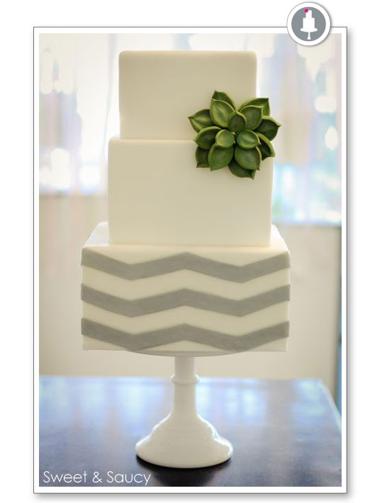 Chevron & Succulent Cake by Sweet & Saucy
