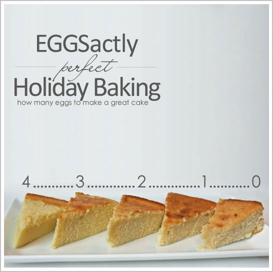Eggs-actly Perfect Holiday Baking