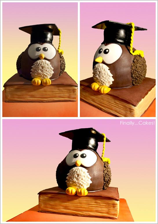 Owl Cake for Graduation