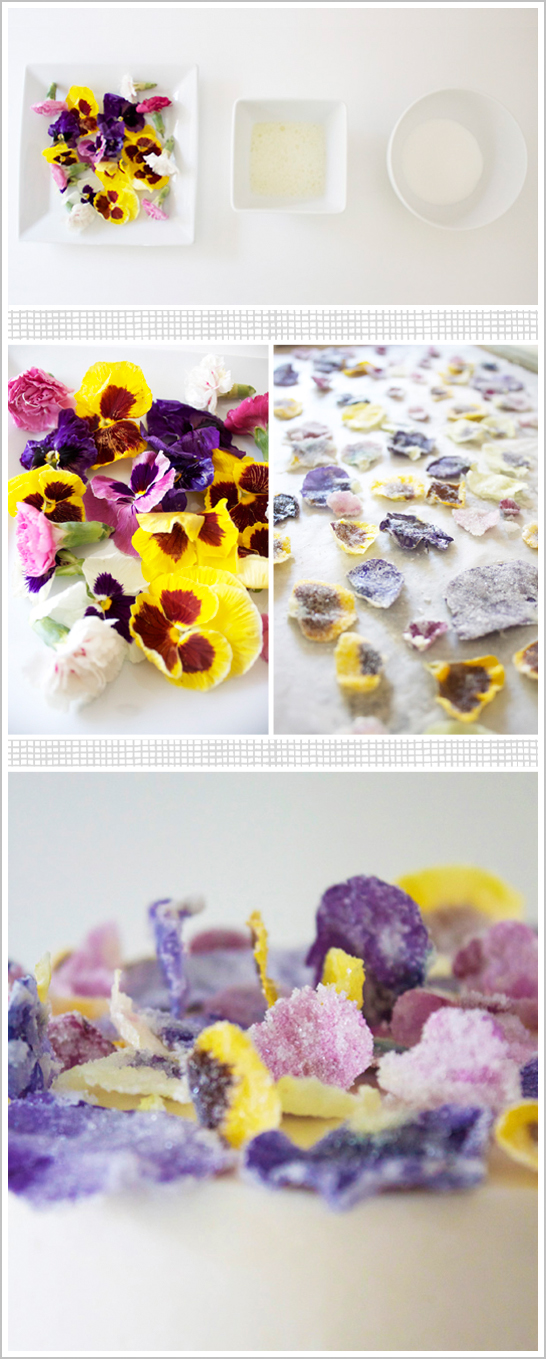 DIY: Glittering Sugar Coated Flowers