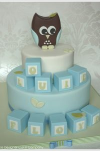 Owl & Blocks Baby Shower Cake