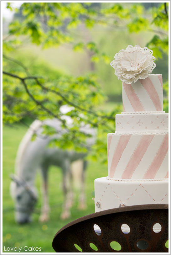 Equestrian Cake by Lovely Cakes  |  TheCakeBlog.com