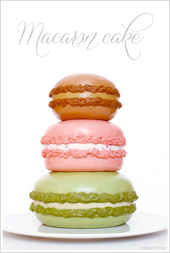 Macaron Cake Tutorial by Miso Bakes    TheCakeBlog.com