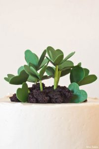 DIY:  Shamrocks & Lucky Clovers Cake