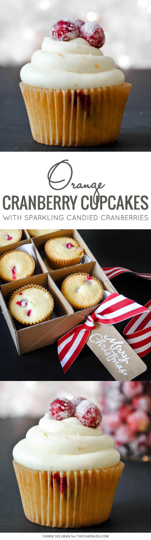 Cranberry Orange Cupcakes with sugared cranberries.  Perfect for the holidays and Christmas dessert | Carrie Sellman for TheCakeBlog.com