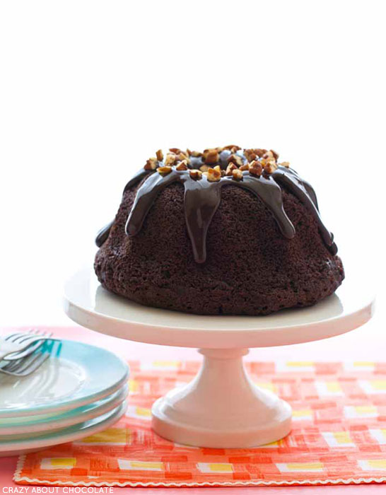Chocolate Chocolate Chip Bundt Cake | by Krystina Castella, author of Crazy About Chocolate