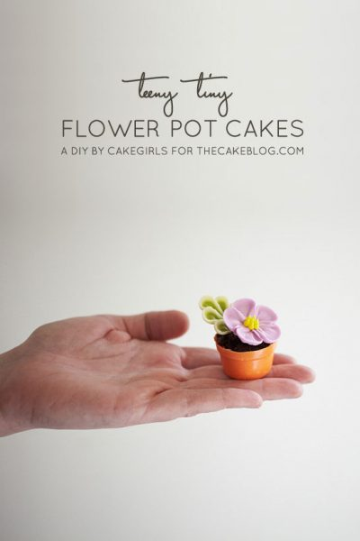 DIY : Teeny Tiny Flower Pot Cakes