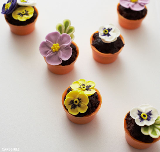 Teeny Tiny Flower Pot Cakes | Cake Tutorial by Cakegirls for TheCakeBlog.com