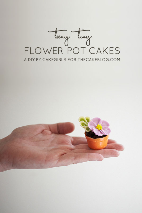 DIY Tiny Flower Pot Cakes | A cake project with step-by-step instructions | by Cakegirls for TheCakeBlog.com
