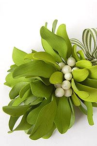 Learn how to make sugar mistletoe | Tutorial by Petalsweet for TheCakeBlog.com