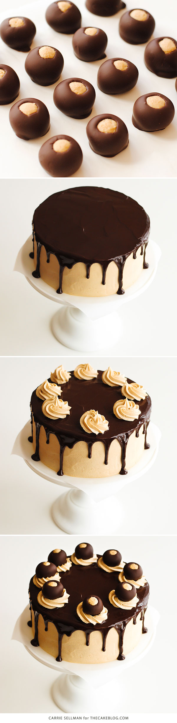 Chocolate Peanut Butter Cake - moist chocolate cake paired with peanut butter frosting and filling, topped with drippy chocolate ganache and homemade peanut butter balls, aka buckeyes | Carrie Sellman for TheCakeBlog.com