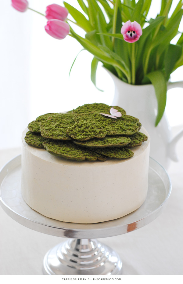 Cookie Moss Cake | how to make edible moss from sugar cookie dough | by Carrie Sellman for TheCakeBlog.com