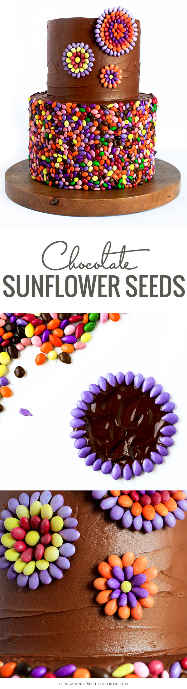 Chocolate Sunflower Seed Cake | by Erin Gardner for TheCakeBlog.com