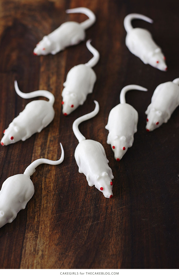 Creepy Mice Cakes! Learn how to make these spooky, red velvet filled, mice cakes -- a Halloween food sure to freak out your party guests   Cakegirls for TheCakeBlog.com