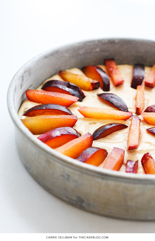 Spiced Plum Cake with Whipped Yogurt - an elegant yet easy cake recipe for holiday entertaining. | Carrie Sellman for TheCakeBlog.com