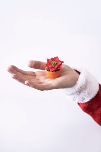 Mini Poinsettia Cakes
