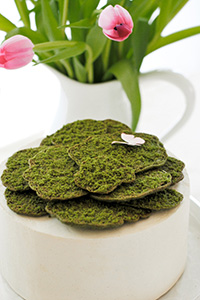 Sugar Cookie Moss Cake