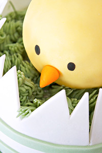 Spring Chick Cake | by Miso Bakes for TheCakeBlog.com
