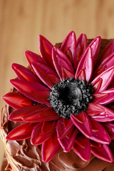 Chocolate Sunflower Cake
