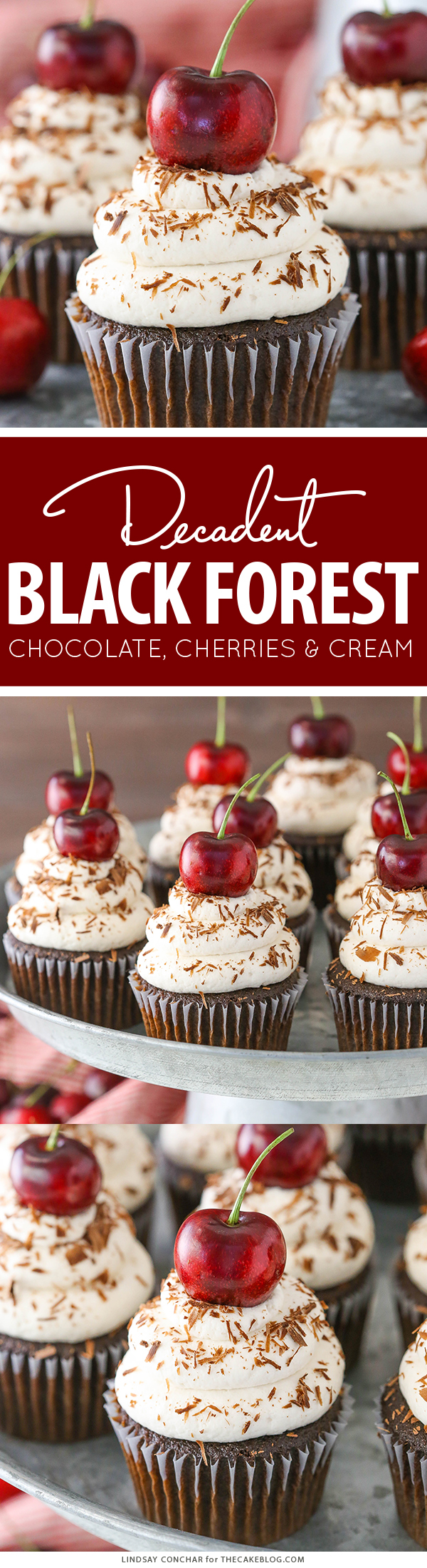 Black Forest Cupcakes - moist chocolate cupcake, homemade cherry filling and fresh vanilla whipped cream on top | by Lindsay Conchar for TheCakeBlog.com