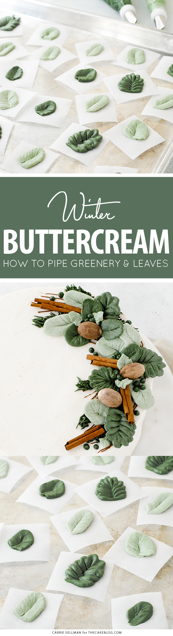 How to pipe buttercream greenery and leaves, with video | by Carrie Sellman for TheCakeBlog.com