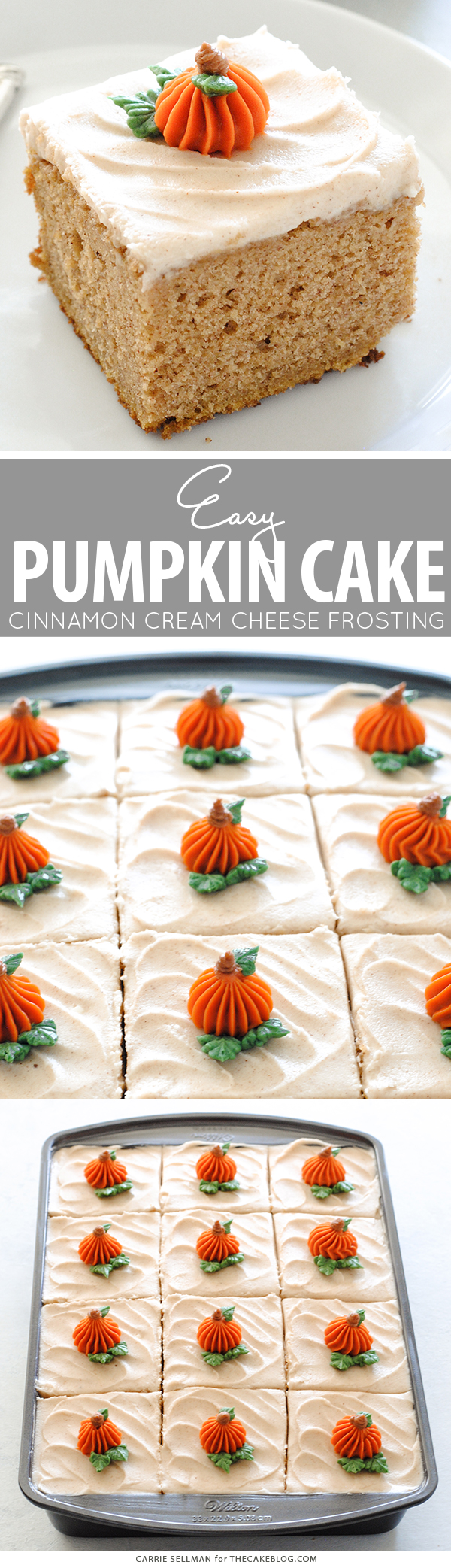 Pumpkin Sheet Cake - easy pumpkin cake with cinnamon cream cheese frosting, made from scratch and perfect for a crowd | by Carrie Sellman for TheCakeBlog.com