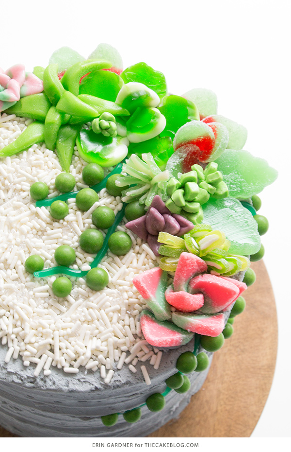 Candy Succulent Cake - how to make a succulent cake with edible candy succulents   by Erin Gardner for TheCakeBlog.com