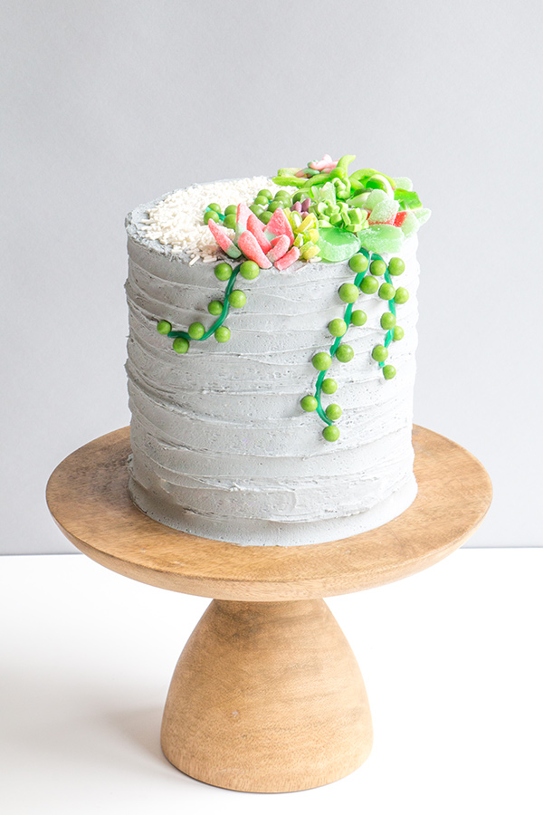 Candy Succulent Cake - how to make a succulent cake with edible candy succulents | by Erin Gardner for TheCakeBlog.com
